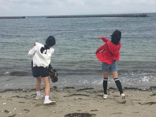 日間賀島 海岸を散歩